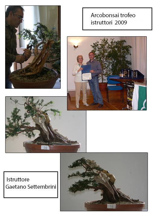 2009 Arcobonsai Trofeo Istruttori